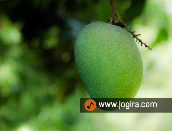 Beauty benefits of mango
