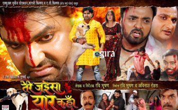 भोजपुरी फिल्म तेरे जईसा यार कहाँ का पोस्टर