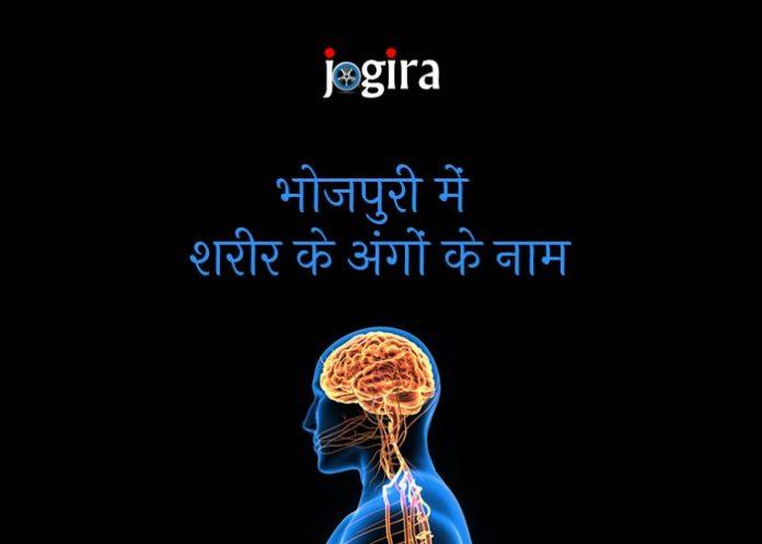 भोजपुरी में शरीर के अंगों के नाम | Body Parts Name in Bhojpuri Language
